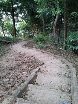 tangga habibie